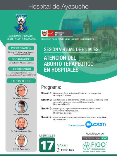 Sesión Virtual de Filiales – Hospital de Ayacucho – 17 de marzo 2021