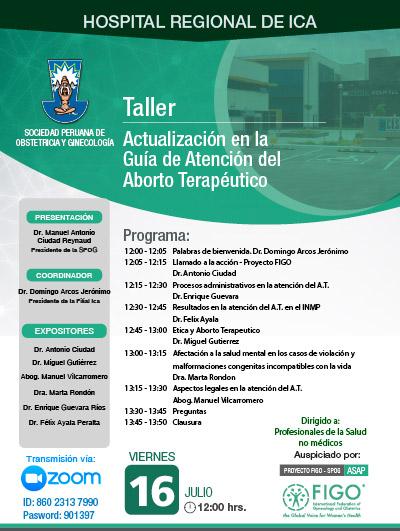 Sesión Virtual Zoom – Taller: ACTUALIZACIÓN EN LA GUÍA DE ATENCIÓN DEL ABORTO TERAPÉUTICO – 16 de julio de 2021