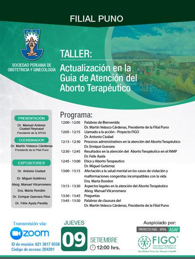 Sesión Virtual Zoom – Taller: ACTUALIZACIÓN EN LA GUÍA DE ATENCIÓN DEL ABORTO TERAPÉUTICO – 09 de setiembre de 2021