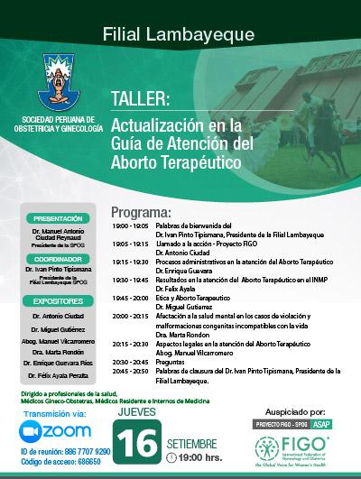 Sesión Virtual Zoom – Taller: ACTUALIZACIÓN EN LA GUÍA DE ATENCIÓN DEL ABORTO TERAPÉUTICO – 16 de setiembre de 2021